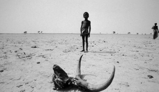 Qué grave resulta que, en pleno siglo XXI, el fantasma del hambre recorra de nueva cuenta el planeta, al menos en 30 países.