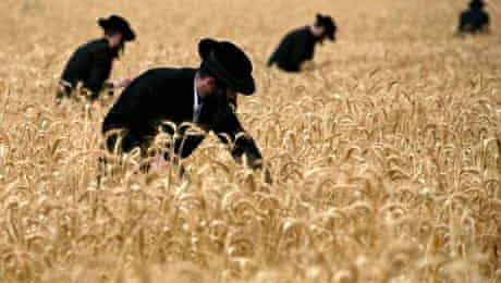 Shavuot: La entrega de la Torá y el poder de crecimiento en el hombre
