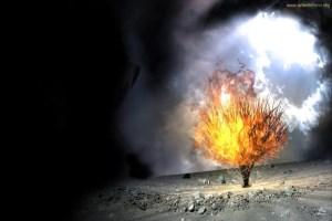 Es el amor un grito de fuego. La zarza sagrada germina en el pensamiento, arde la luz santa, ilumina a los justos de los pueblos.