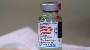 EE. UU. entregará medio millón de vacunas contra el coronavirus Moderna a la Autoridad Palestina para su distribución en Gaza, Judea y Samaria