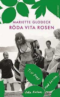 9789113052595_200_roda-vita-rosen_e-bok
