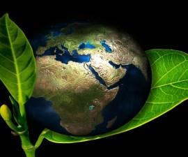 earth-405096_1280