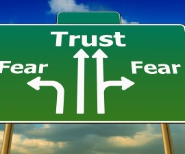FI Propensity trust - fear-441402_1920