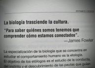 Estamos conectados del libro Estamos ciegos de Jürgen Klaric