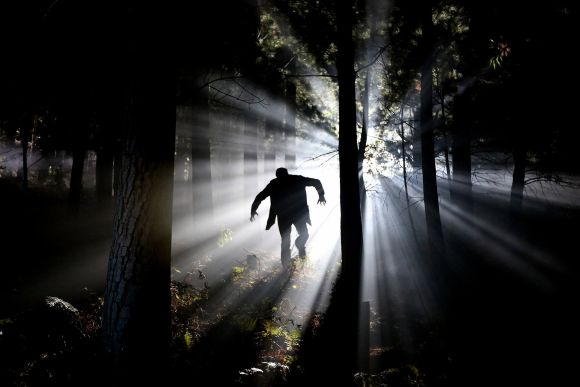Reseña de Frankenstein o el moderno Prometeo: la criatura en el bosque