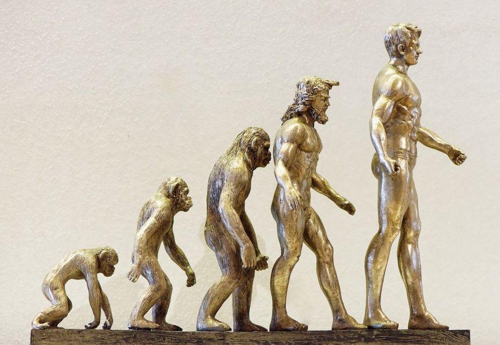 Reseña de El Clan del Oso Cavernario: La evolución del hombre