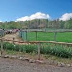 那須高原 南ヶ丘牧場まで1.0km