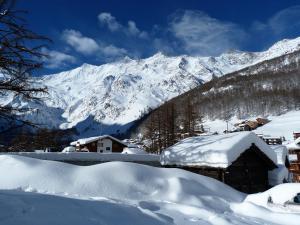 Zwitserse Alpen Januari 2018