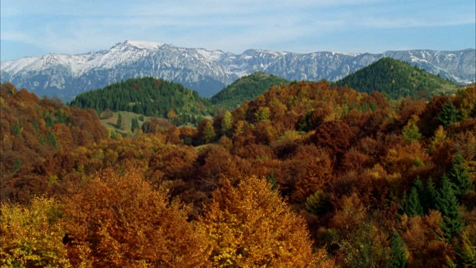 162546362-carpates-donaudelta,-rumaenien-wildnis-zwischen-steppe-und-meer-transylvanie-paysage-pittoresque