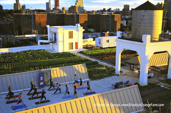 yoga+at+the+Brooklyn+Navy+Yard+farm