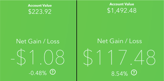 Acorns Gains and Losses over a Year.