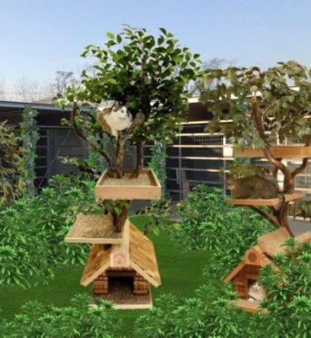 giardino dei gatti-rendering_NS-6827