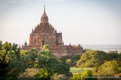 Bagan-54