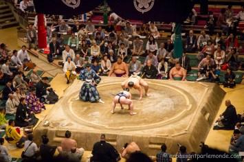 Japon-Tokyo-Tournoi-sumo-10