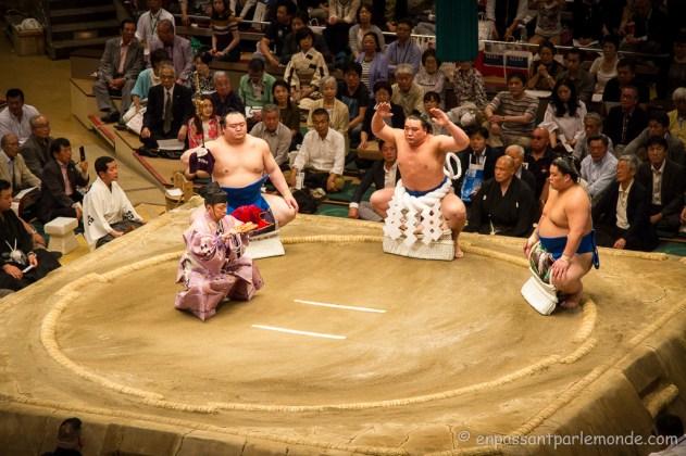 Japon-Tokyo-Tournoi-sumo-14