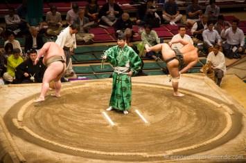 Japon-Tokyo-Tournoi-sumo-8