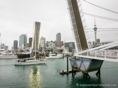 Auckland-13