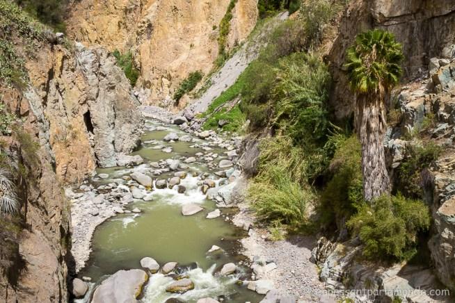 canyon-del-colca-38
