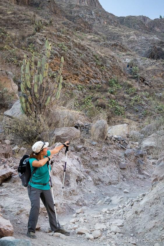 canyon-del-colca-47
