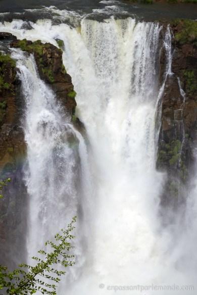 Brésil - Iguaçu-4