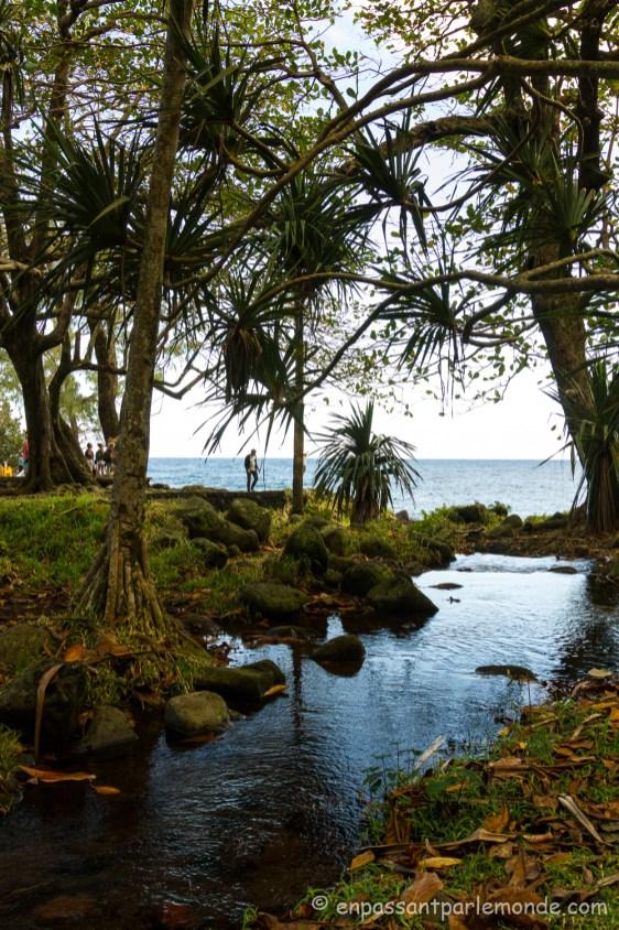 La-Reunion-cote-ocean-53