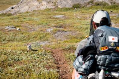 Groenland-ACT-partie-3-20