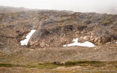 Groenland-ACT-partie-4-30
