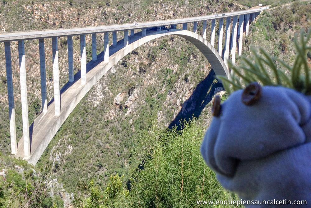 puente bloukrans puenting sudáfrica