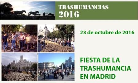 transhumancia-2016