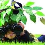 día de las aves rapaces en Laciana