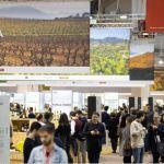 Barcelona Wine Week