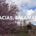 Gracias Salamanca