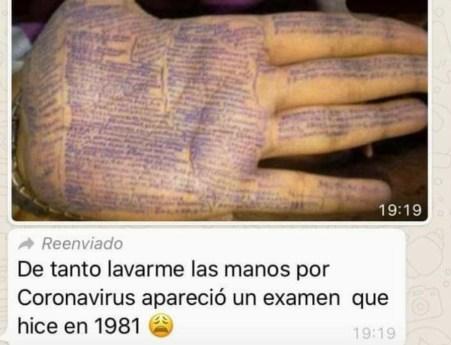 examen 1981