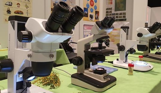 expociencia, microscopio