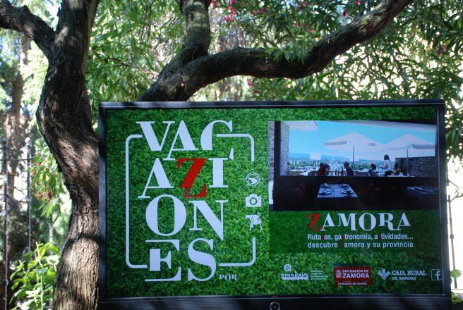 VacaZiones Zamora