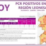 PCR COVID19 A 24 NOVIEMBRE 2020 REGIÓN LEONESA SALAMANCA, ZAMORA Y LEÓN