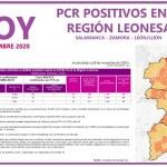 PCR COVID19 A 27 NOVIEMBRE 2020 REGIÓN LEONESA SALAMANCA, ZAMORA Y LEÓN