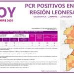 PCR COVID19 A 28 NOVIEMBRE 2020 REGIÓN LEONESA SALAMANCA, ZAMORA Y LEÓN