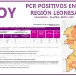 PLANTILLA PCR 17 NOVIEMBRE REGIÓN LEONESA SALAMANCA, ZAMORA Y LEÓN