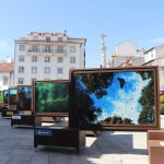 inauguración en Bragança la exposición De polo a polo, un viaje a los grandes paraísos naturales