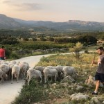 España castiga a las zonas rurales con 1 Mbps