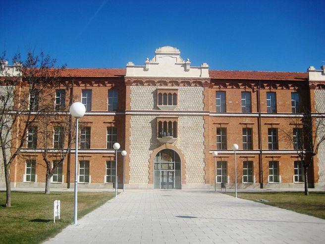 campus viriato