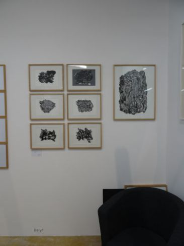 Drawing Room 013 - Galerie Marine Veilleux - Balyc