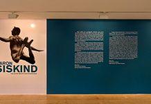 Aaron Siskind - Une autre réalité photographique, Pavillon Populaire, Montpellier, 2014 - Slide 01_1