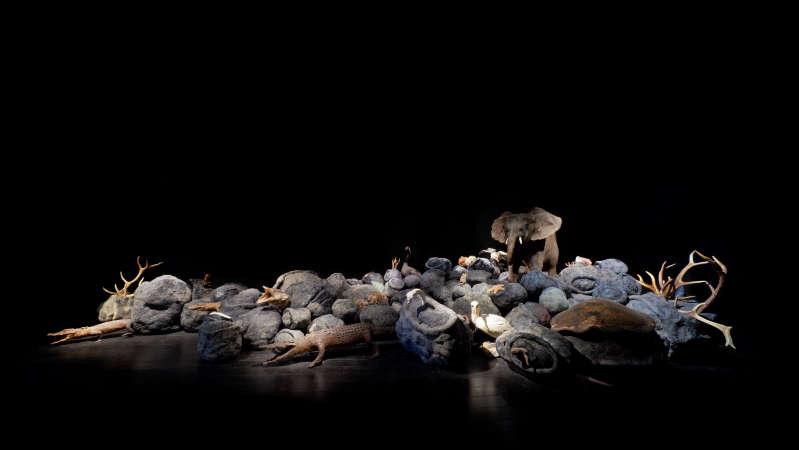 Jean-Luc Parant, Mémoire du merveilleux, 2012