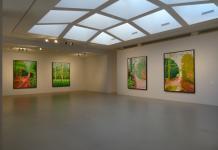 David Hockney, L'Arrivée du printemps. Vue de la salle d'exposition -Fondation Vincent van Gogh Arles 01