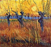 Vincent van Gogh, Saules têtards au coucher du soleil, 1888. Huile sur toile sur carton, 31,6 x 34,3 cm Kröller-Müller Museum, Otterlo