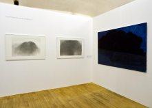 Alexandre Hollan Questions aux arbres d'ici à Lodève - Comment toucher l'espace