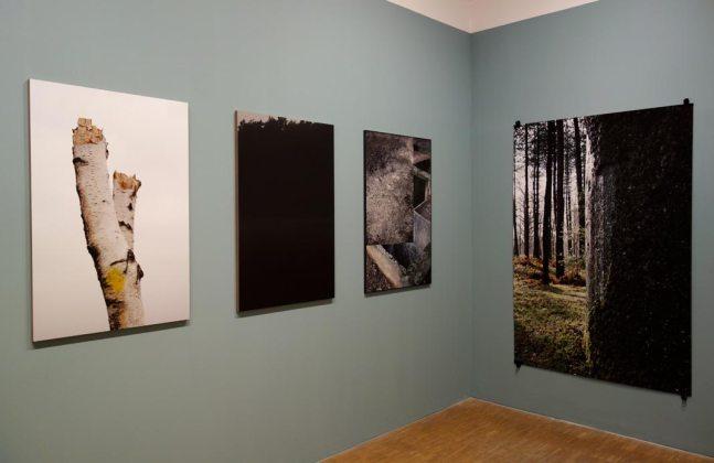 Zoé Van Der Haegen, Stillwood - Boutographies 2017