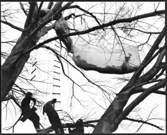 Gordon Matta-Clark, Tree Dance, 1971